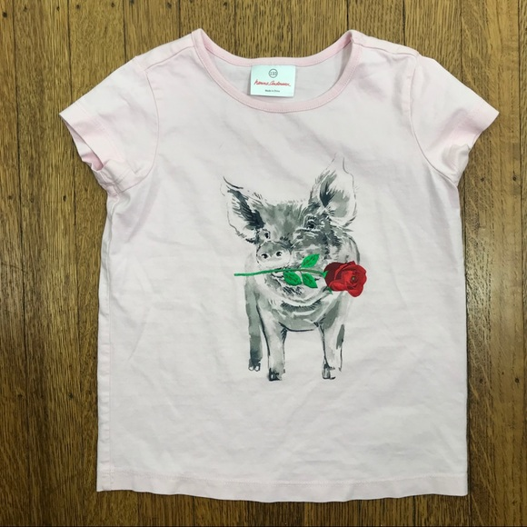 9d90e1625 Hanna Andersson Shirts & Tops | Hanna Anderrson Sz 110 Baby Pink ...